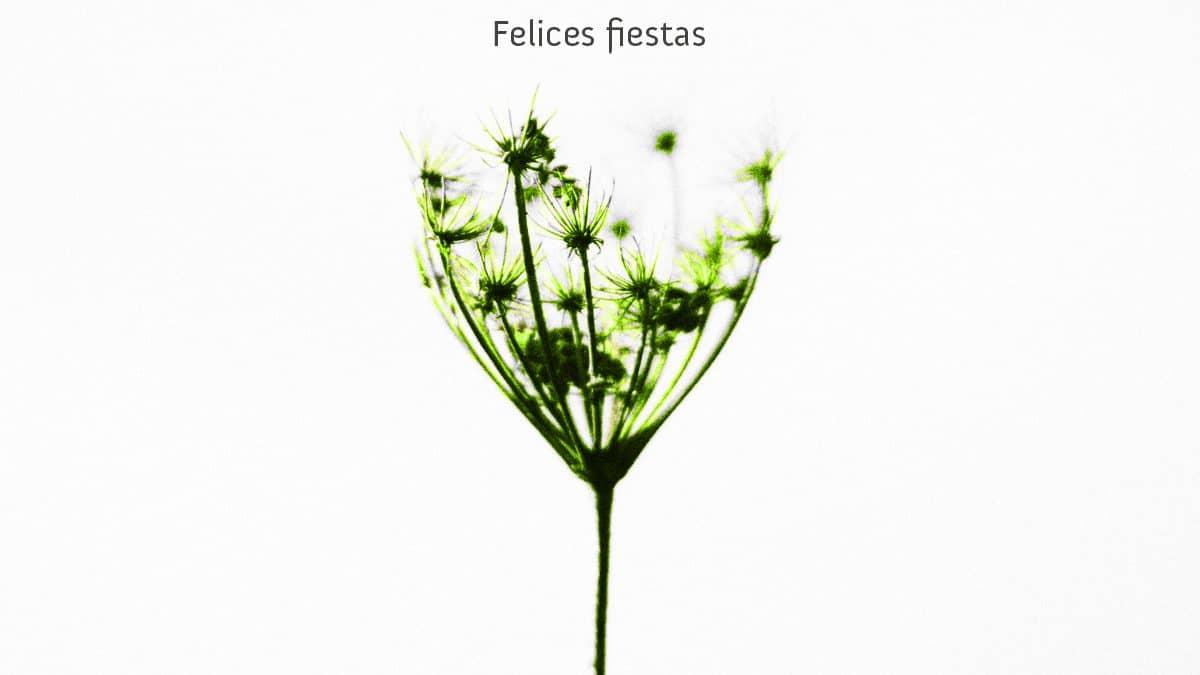 Felices Fiestas madeinyou